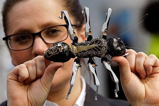 robot-ant